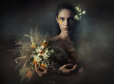 © Adela Rusu, ALSTROEMERIA