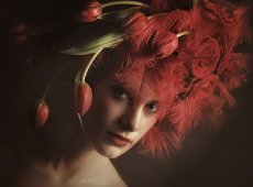 © Adela Rusu, TULIP LOVE