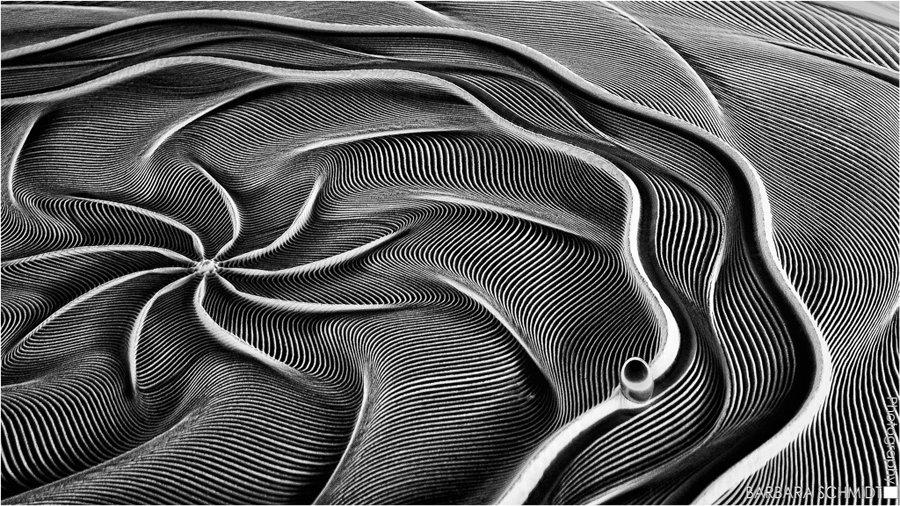 © Barbara Schmidt, Die-Perle