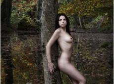 © Bojan Petrović, forest-3