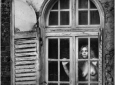 © Bojan Petrović, in-the-window