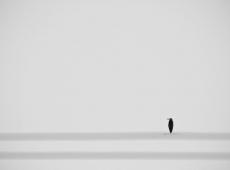 © Ciprian Cenan