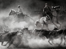 © Dao Tien Dat, In the cold mist