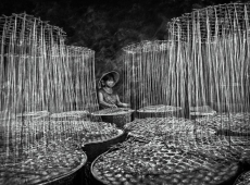 © Dao Tien Dat, The silks of candy