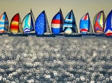 Yacht Race 10