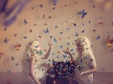 © Tina Genovia Obreja & Luiza Boldeanu, Butterflies