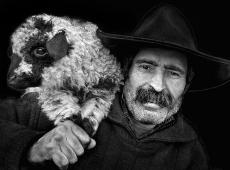 Kerekes István, The lamb