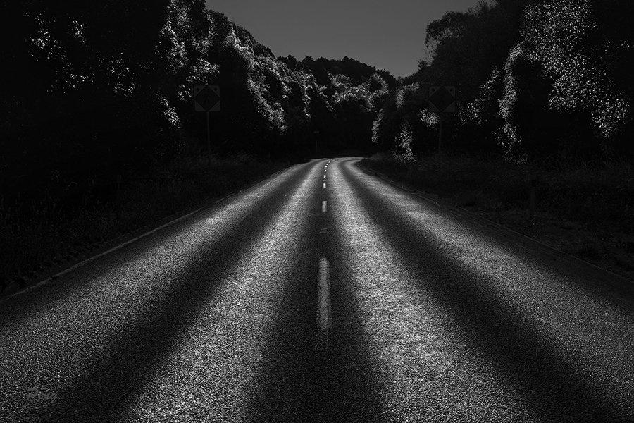 © Jiongxin Peng, Backlight