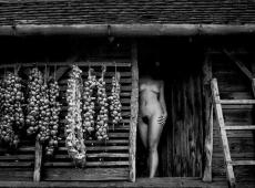 © milan-zivkovic-mesto-mog-detinjstva-bavaniste-1993