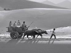 © vanchung-bui-vietnam-four seater