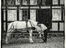 Slobodna_monohrom_Nils-Erik_Jerlemar_Sweden_Man_and_Horse