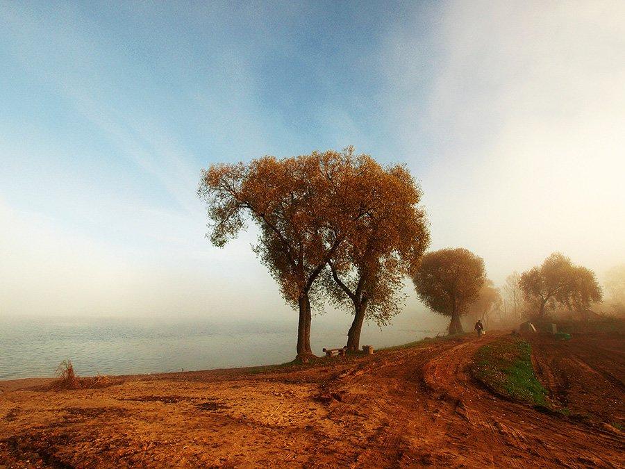 © Normante Ribokaite, Morning