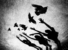 © Normante Ribokaite, Crows  Greeting