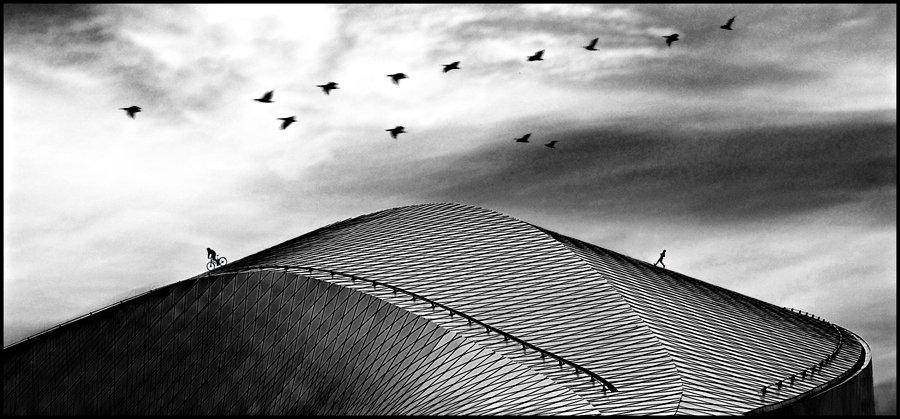 © Ole Suszkiewicz, Roof Sport