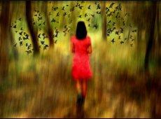 © Ole Suszkiewicz, Autumn Walk