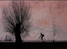 © Ole Suszkiewicz, Going Home