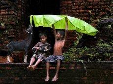 © Sanjoy Bhattacharya, BONDS-OF-DELIGHT