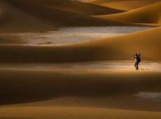 alone in Dunes