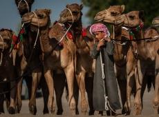 camel and myself 4